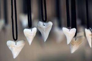Shark Tooth Necklaces at The Beach Club Resort Gulf Shores Alabama
