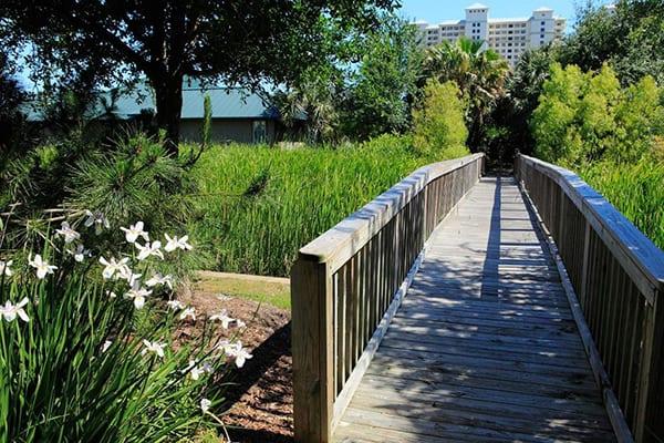 Walking Trails at The Beach Club Gulf Shores Alabama